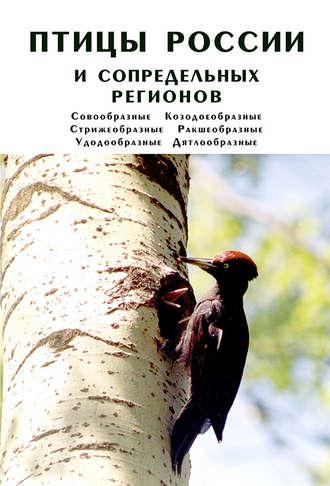 Птицы России и сопредельных регионов. Совообразные, Козодоеобразные, Стрижеобразные, Ракшеобразные, Удодообразные, Дятлообразные